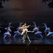 Le Lac des Cygnes par le Ballet Festival de St Petersbourg